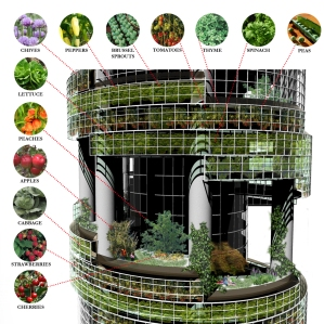 Design Image from Verticalfarm.com